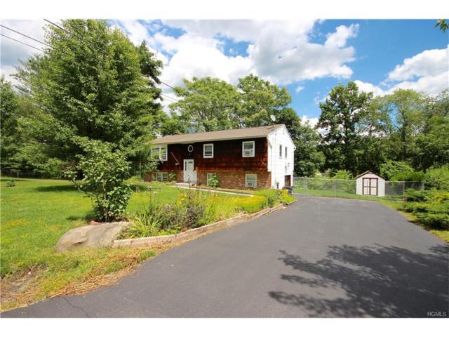 10 Hawks Nest Road, Monroe, NY 10950 (MLS #4729363) :: William Raveis Baer & McIntosh