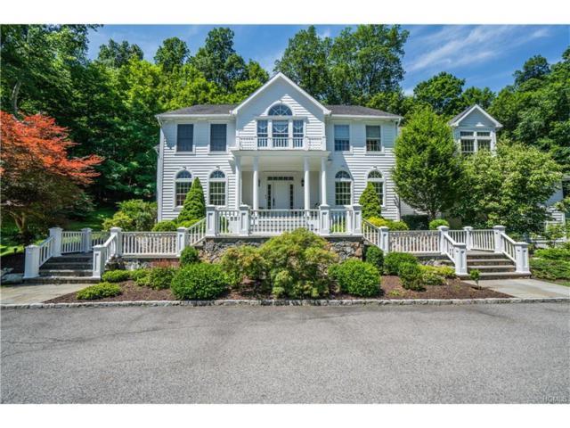 14 Brundige Drive, Goldens Bridge, NY 10526 (MLS #4729404) :: Mark Boyland Real Estate Team