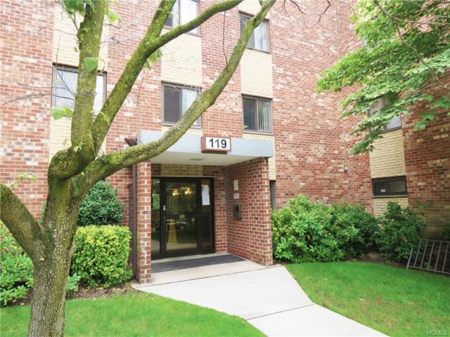 119 Dehaven Drive 134C, Yonkers, NY 10703 (MLS #4729615) :: Mark Boyland Real Estate Team