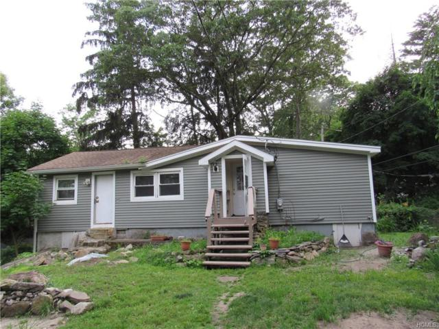 59 Deer Trail, Greenwood Lake, NY 10925 (MLS #4729808) :: Mark Boyland Real Estate Team