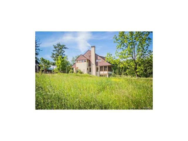 75 Old Clove Road, High Falls, NY 12440 (MLS #4729856) :: Mark Boyland Real Estate Team