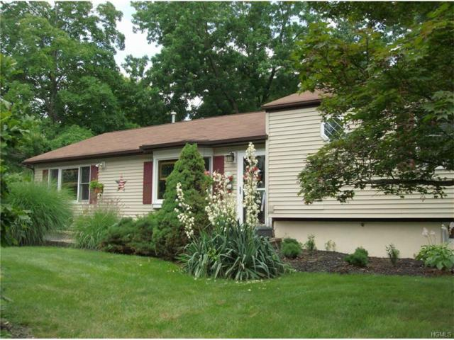 86 Mckenna Street, Blauvelt, NY 10913 (MLS #4730014) :: William Raveis Baer & McIntosh