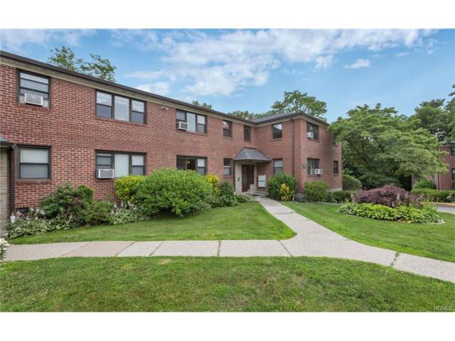 154 Martling Avenue 5K3, Tarrytown, NY 10591 (MLS #4730735) :: William Raveis Legends Realty Group
