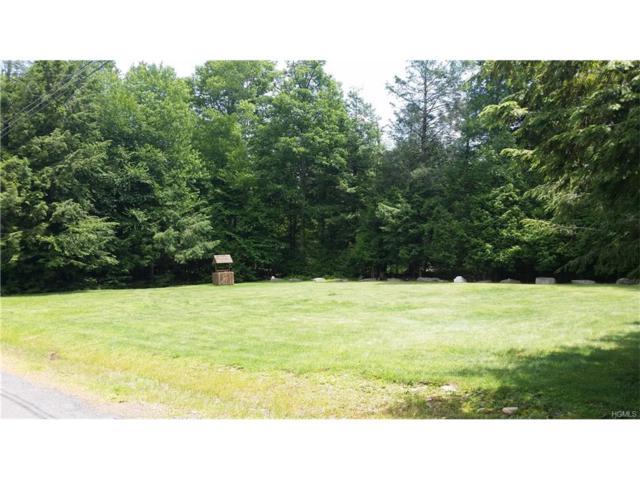Beaver Lake Road, Rock Hill, NY 12775 (MLS #4731425) :: Michael Edmond Team at Keller Williams NY Realty