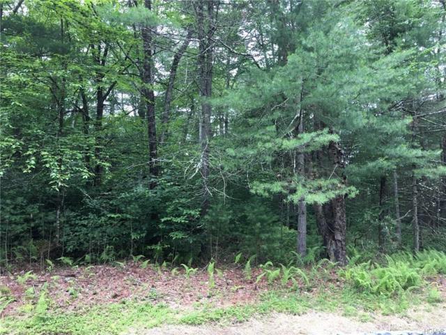 Plank Road, Monticello, NY 12777 (MLS #4731590) :: Michael Edmond Team at Keller Williams NY Realty