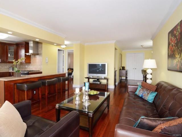 5900 Arlington Avenue 5H, Bronx, NY 10471 (MLS #4732092) :: Mark Boyland Real Estate Team