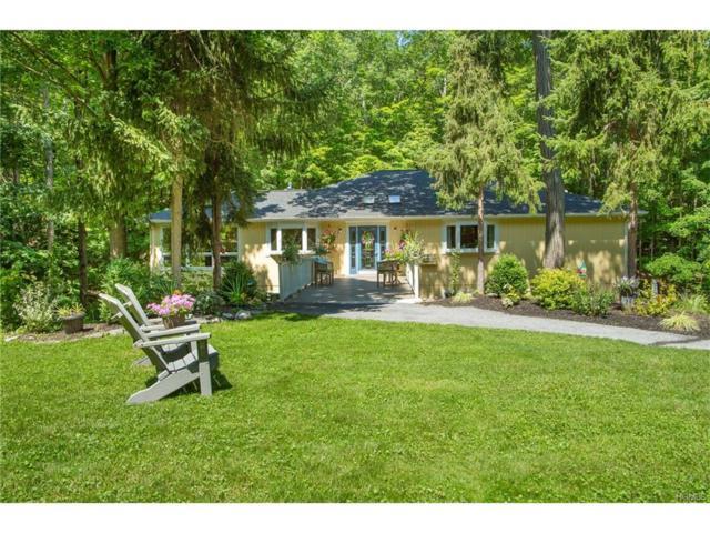 439 Lake Drive, Rhinebeck, NY 12572 (MLS #4732169) :: Mark Boyland Real Estate Team