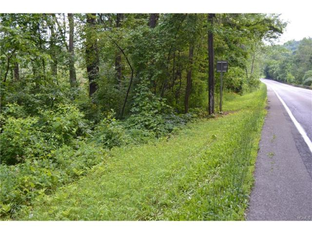Route 22, Millerton, NY 12546 (MLS #4732200) :: Mark Seiden Real Estate Team