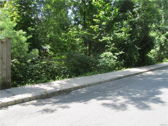 Piermont Avenue, Piermont, NY 10968 (MLS #4733221) :: William Raveis Baer & McIntosh