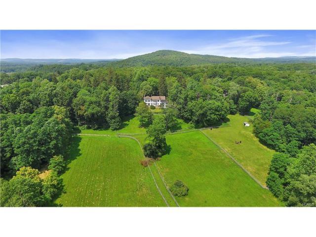 2728 Route 44, Millbrook, NY 12545 (MLS #4733252) :: Mark Boyland Real Estate Team