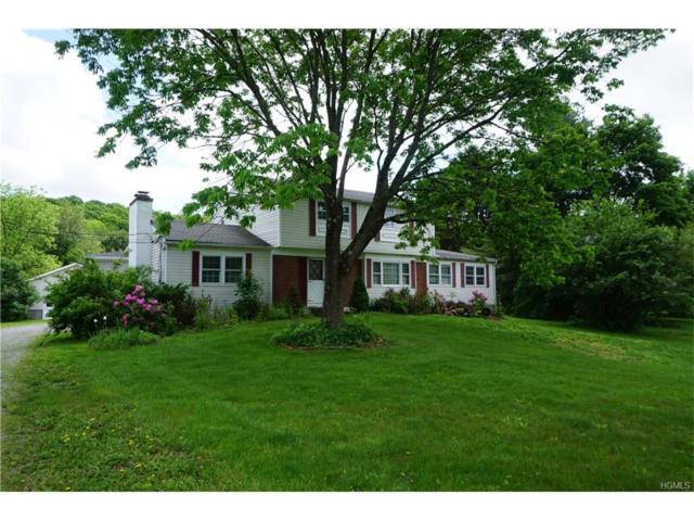 5666 Route 82, Clinton Corners, NY 12514 (MLS #4733515) :: William Raveis Legends Realty Group