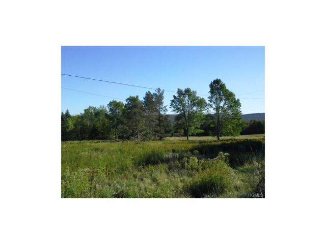 519 Brown Settlement Road, Livingston Manor, NY 12758 (MLS #4733683) :: Mark Boyland Real Estate Team