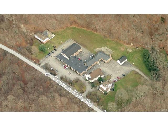 12 Croton Falls Road, Somers, NY 10541 (MLS #4734320) :: Mark Boyland Real Estate Team