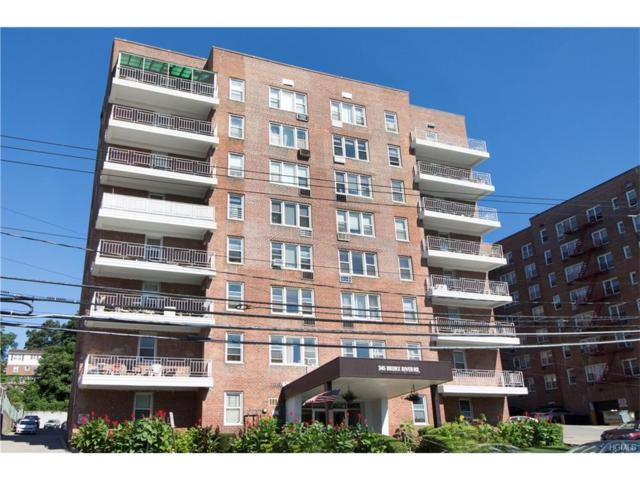 345 Bronx River Road 3F, Yonkers, NY 10704 (MLS #4734346) :: Mark Boyland Real Estate Team