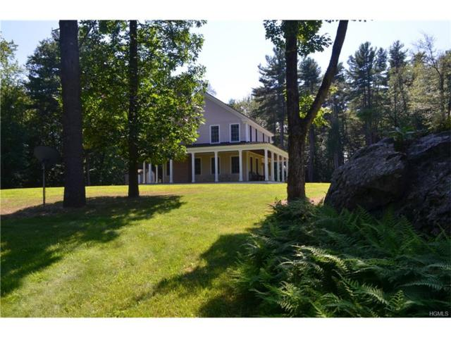 1040 County Route 13, Chatham, NY 12136 (MLS #4734571) :: Mark Boyland Real Estate Team