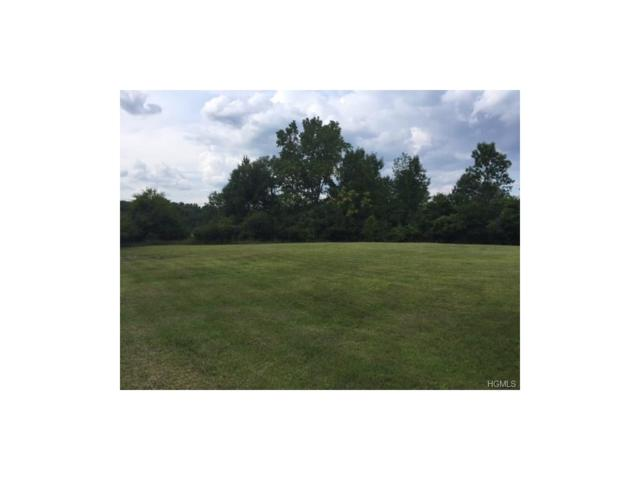 6 Gumwood Drive, Chester, NY 10924 (MLS #4734736) :: William Raveis Baer & McIntosh