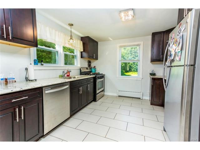 303 Buena Vista Road, New City, NY 10956 (MLS #4734890) :: William Raveis Baer & McIntosh