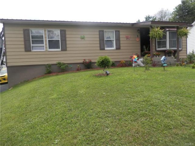 1 Nitchkie Street, Livingston Manor, NY 12758 (MLS #4735207) :: Mark Boyland Real Estate Team