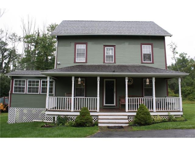 19 Strack Road, Goshen, NY 10924 (MLS #4735749) :: William Raveis Baer & McIntosh