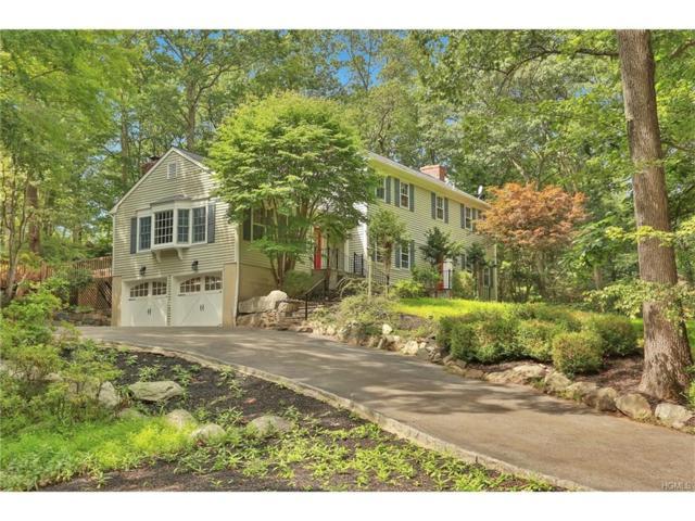 55 Doe View Lane, Pound Ridge, NY 10576 (MLS #4736161) :: Mark Boyland Real Estate Team