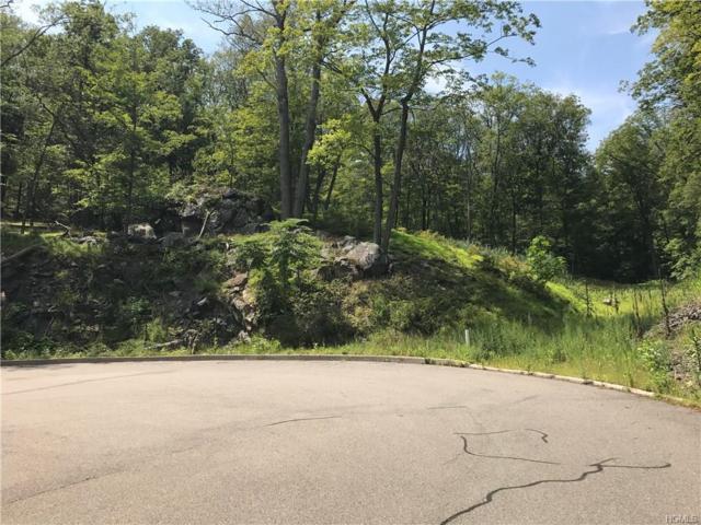 Weyant Road, Fort Montgomery, NY 10922 (MLS #4736523) :: William Raveis Baer & McIntosh