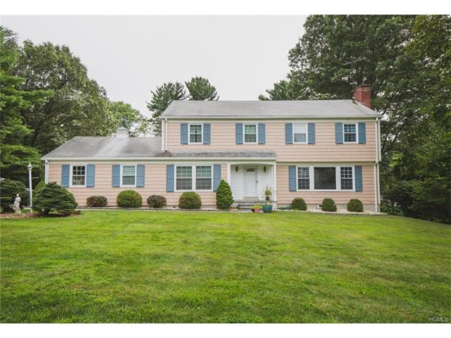 48 Meadow Road, Briarcliff Manor, NY 10510 (MLS #4736656) :: William Raveis Legends Realty Group