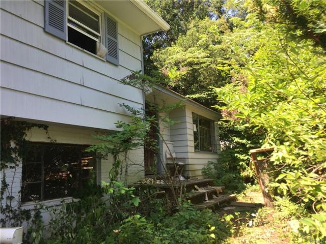 113 Hayes Street, Blauvelt, NY 10913 (MLS #4737008) :: William Raveis Baer & McIntosh