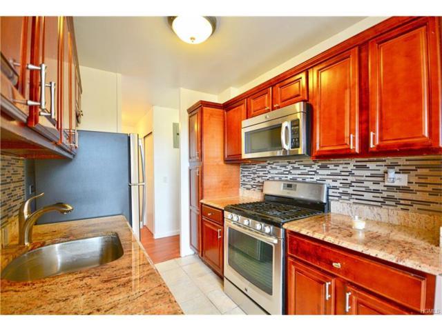 875 Morrison Avenue 17M, Bronx, NY 10473 (MLS #4737091) :: Mark Boyland Real Estate Team