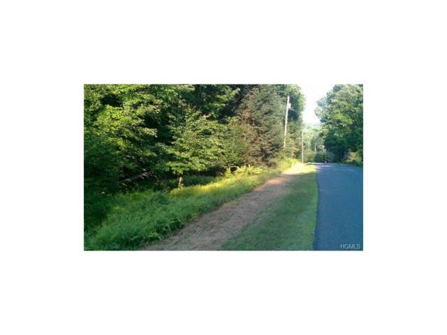 Forest Road, Neversink, NY 12740 (MLS #4737096) :: Mark Boyland Real Estate Team