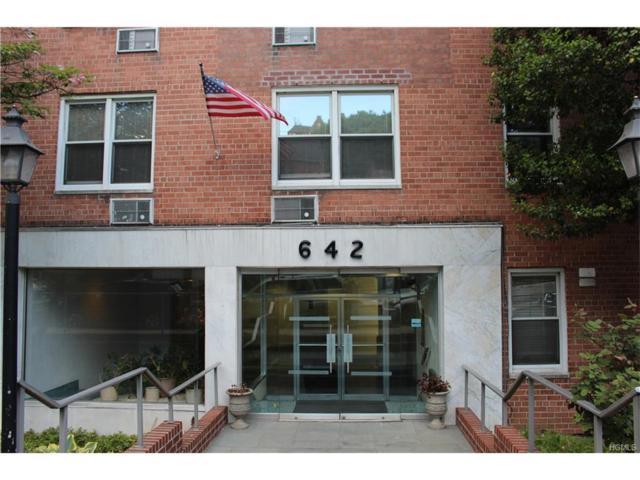 642 Locust Street 4K, Mount Vernon, NY 10552 (MLS #4737124) :: Mark Boyland Real Estate Team