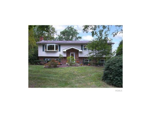 12 Valley Court, Pearl River, NY 10965 (MLS #4737208) :: William Raveis Baer & McIntosh