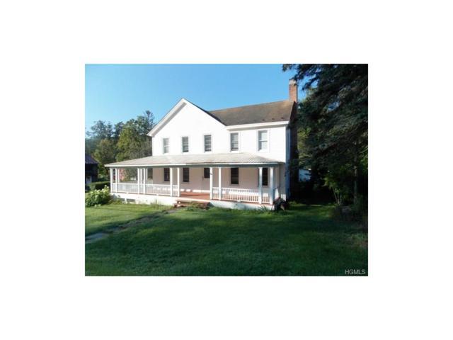 307 Main Street, Grahamsville, NY 12740 (MLS #4737332) :: Mark Boyland Real Estate Team