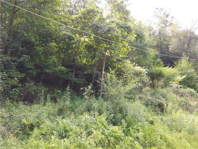 Woodland Drive, Woodbourne, NY 12788 (MLS #4737358) :: Mark Boyland Real Estate Team