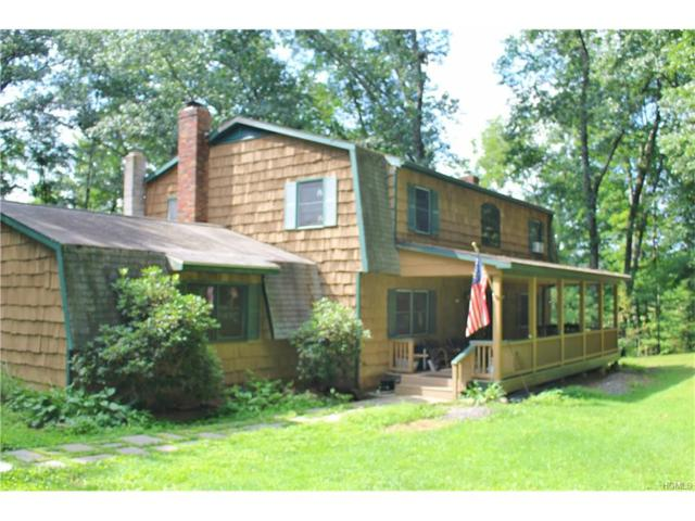 116 Krum Road, Kerhonkson, NY 12446 (MLS #4737567) :: Mark Boyland Real Estate Team