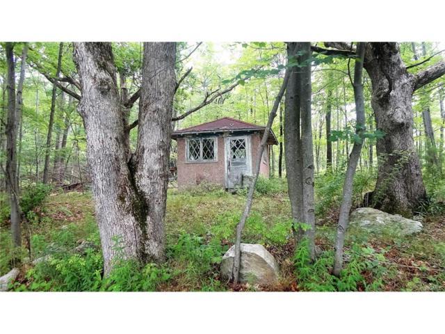 Inn Road, Cragsmoor, NY 12420 (MLS #4737664) :: William Raveis Legends Realty Group