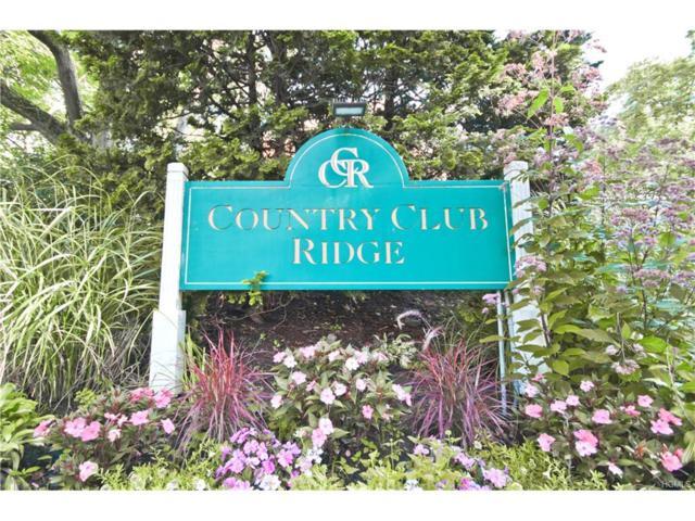67 Rockledge Road 1B, Hartsdale, NY 10530 (MLS #4737735) :: Mark Boyland Real Estate Team