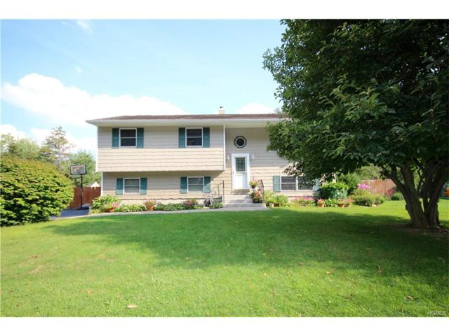 334 Lake Shore Drive, Monroe, NY 10950 (MLS #4737776) :: William Raveis Baer & McIntosh