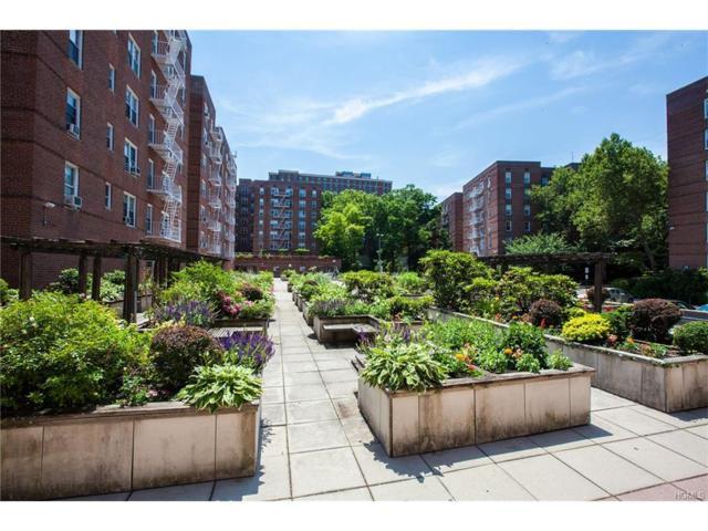 19 Abeel Street 4D, Yonkers, NY 10705 (MLS #4738190) :: Mark Boyland Real Estate Team