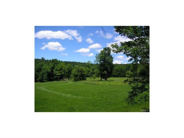 Mcguire Road, Neversink, NY 12765 (MLS #4738207) :: Mark Boyland Real Estate Team