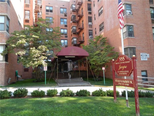 555 Bronx River Road 1E, Yonkers, NY 10704 (MLS #4738311) :: Mark Boyland Real Estate Team