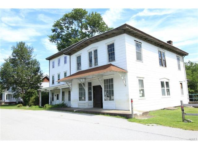 113 Ketchum Avenue, Cornwall, NY 12518 (MLS #4738321) :: William Raveis Baer & McIntosh