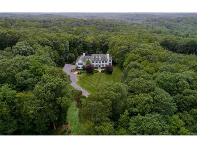73 Dann Farm Road, Pound Ridge, NY 10576 (MLS #4738437) :: Mark Boyland Real Estate Team