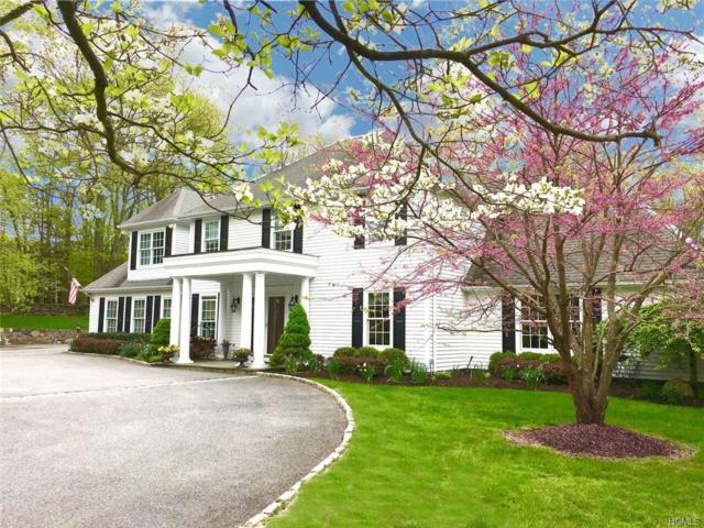 48 Davids Way, Bedford Hills, NY 10507 (MLS #4738777) :: Mark Boyland Real Estate Team