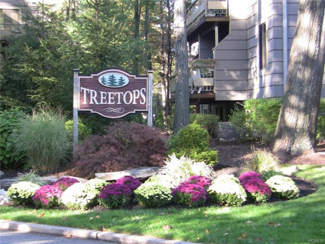 272 Treetop Circle, Nanuet, NY 10954 (MLS #4739180) :: William Raveis Baer & McIntosh