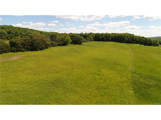 133 Woodstock Road, Millbrook, NY 12545 (MLS #4739500) :: Mark Boyland Real Estate Team
