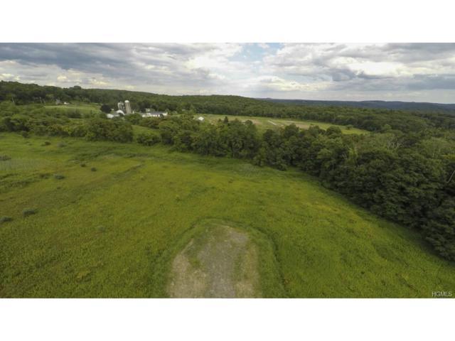 1220 White Horse Lane, Yorktown Heights, NY 10598 (MLS #4739519) :: Mark Boyland Real Estate Team