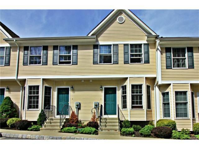 103 Alexandra Court, Carmel, NY 10512 (MLS #4739696) :: Mark Boyland Real Estate Team