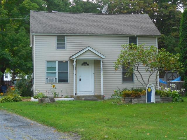 3691 Route 22, Wassaic, NY 12592 (MLS #4739839) :: Mark Boyland Real Estate Team