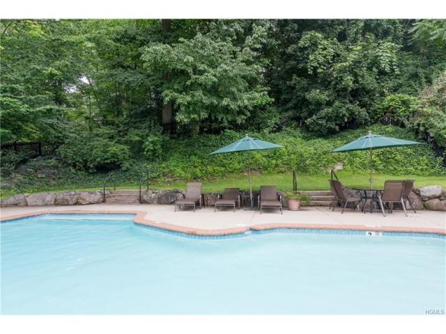 21 Old Mill Lane, Ardsley, NY 10502 (MLS #4739861) :: William Raveis Legends Realty Group