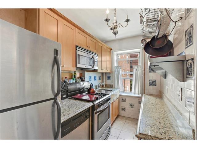 5440 Netherland Avenue D42, Bronx, NY 10471 (MLS #4739875) :: Mark Boyland Real Estate Team